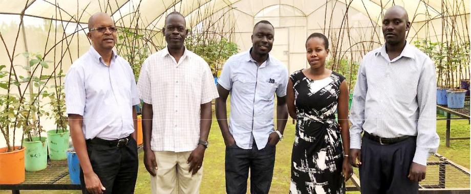 Part of the Research Team L-R: Prof. Phinehas Tukamuhabwa-Soybean Breeder, Paul Kabayi-Senior Technician, Tonny Obua-Soybean Breeder, Mercy Namara-Training Coordinator, George Yiga-Technician
